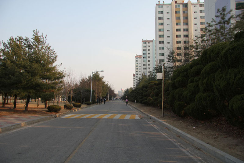 Much of the foliage that separated KAIST from the Hanbit apartments were cut down early March